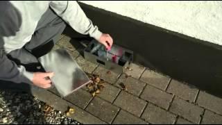 Gift depot / Rat killing box 2