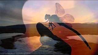 Enya ~ La Soñadora ~  The Memory of Trees CD