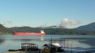 Vancouver Island Hyundai Vision Bulk Carrier