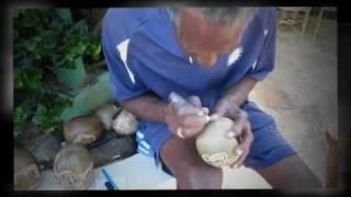 Jamaica 2011 : Marshall Gourd Carver