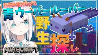 #11【Minecraft 】 幻の青ウーパー探してみる~運試し~ season3【アルス・アルマル/にじさんじ】