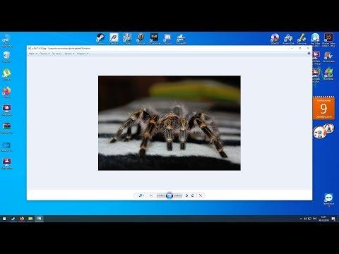 Как включить всем привычный просмотр изображений и факсов в Windows 10