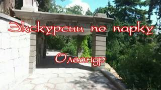 Экскурсии по парку Санатория Кирова в Ялте.  Олеандр
