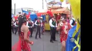 carnaval tenancingo tlaxcala 2014