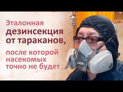 Видео: Дезинсекция от тараканов в Ясенево, после которой прусаков точно не останется