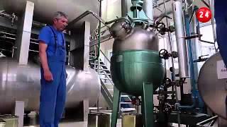 В Болгарии начался сезон производства масла розы