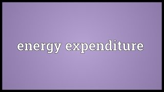 Energy expenditure Meaning