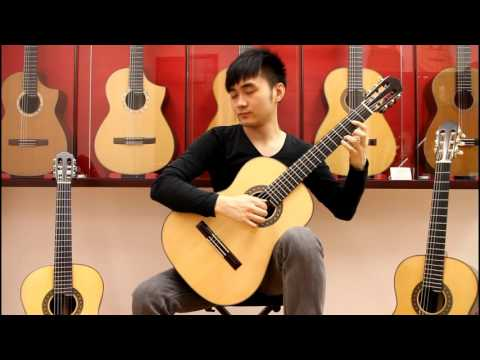 Brazilian rosewood VS Madagascar rosewood Guitars