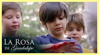 [11.35 MB] La Rosa de Guadalupe: Gonzalo pierde el dedo por un reto de internet | El reto...