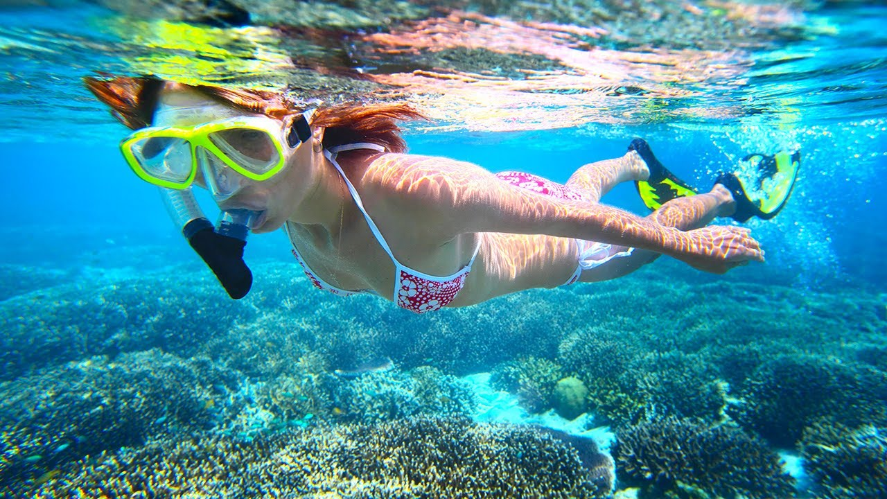 Best Maui Snorkeling