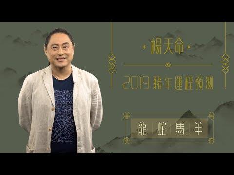 楊天命 | 2019豬年運程預測(龍蛇馬羊)!十二生肖犯太歲、吉星、凶星講解 | ELLE HK