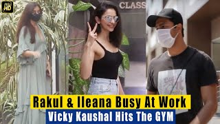 Rakul Preet Singh \u0026 Ileana Busy At Work, Fit Vicky Kaushal Hits his GYM for Workout