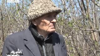 REPORTAJ VIDEO - Viata la tara printre aluni