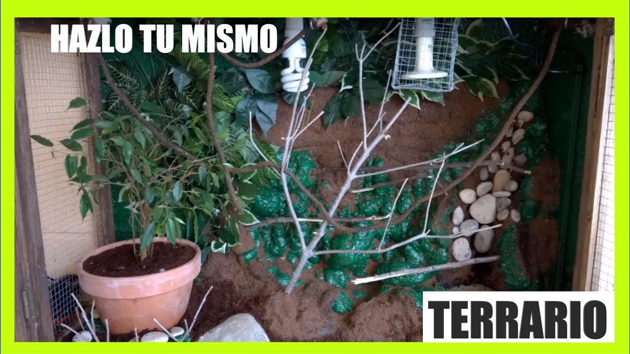 Como construir un terrario para camaleon tutorial paso a - Como construir un terrario ...