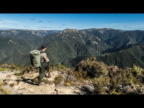 Kaweka Ranges: Sika Hunting January 2017