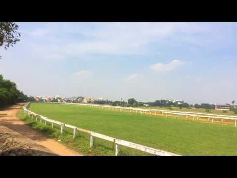guindy race course