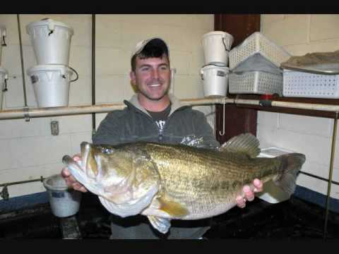 Some of the Biggest Bass Ever Caught