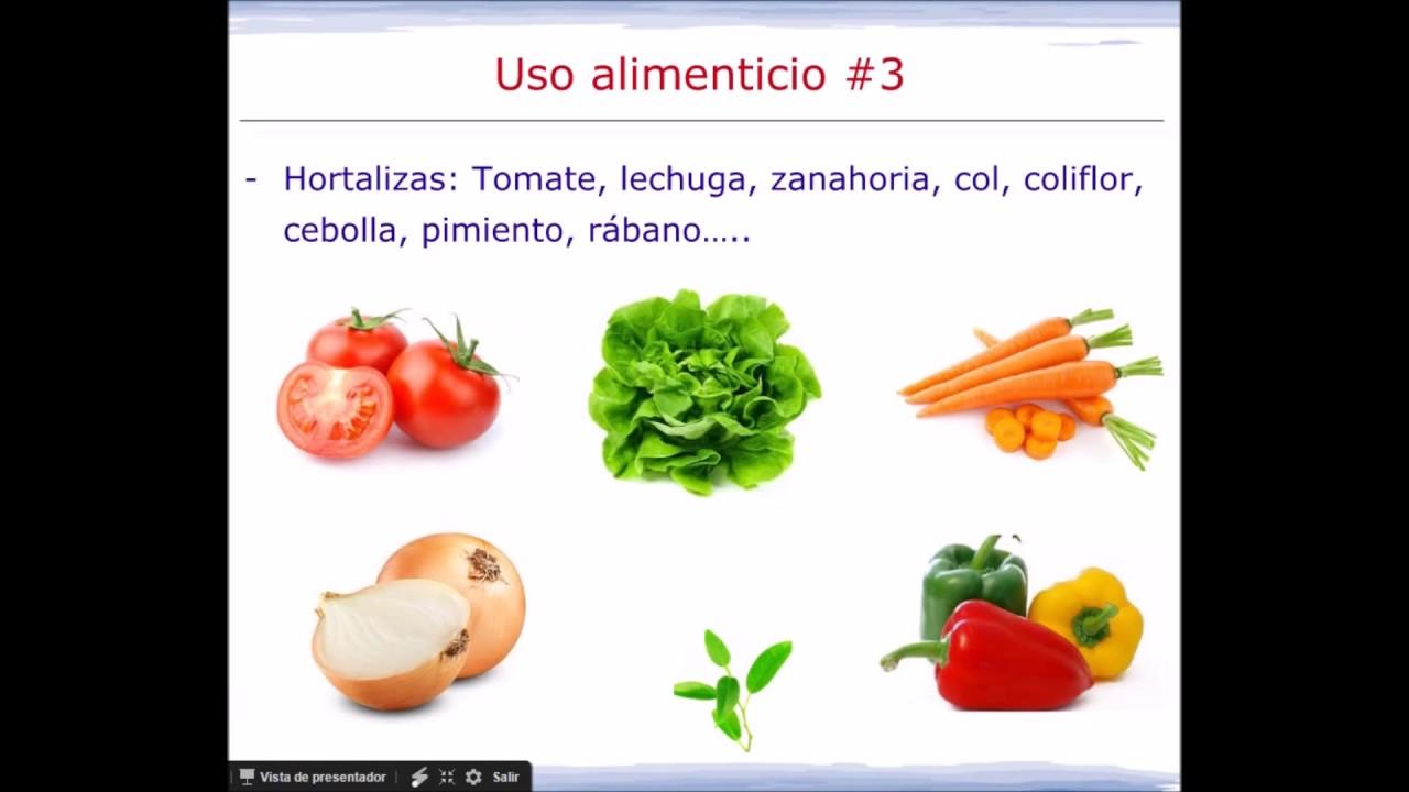Los usos de las plantas youtube for Utilidad de las plantas ornamentales