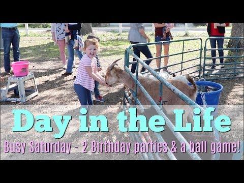 DAY IN THE LIFE // SATURDAY FUN // TEAM DARLEY VLOG