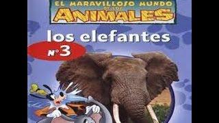 El maravilloso mundo de los animales de disney, los elefantes. ♥