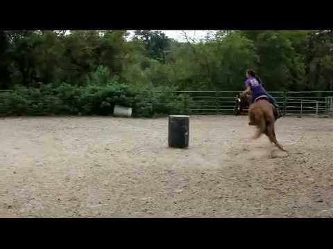 Pacific Wrangler Jet - 2nd time on barrels - 4 year old