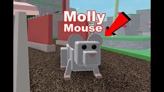 Roblox Pet Escape con Mouse Molly!