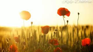 leo rojas - Umut hiç bitmeyen bahar mevsimidir...