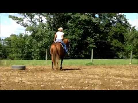 Chit Chat In China - 2007 AQHA barrel mare for sale