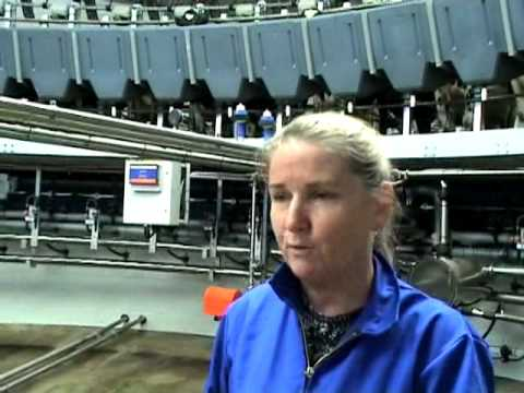 Introduction to Tokanui farm by Debbie Care