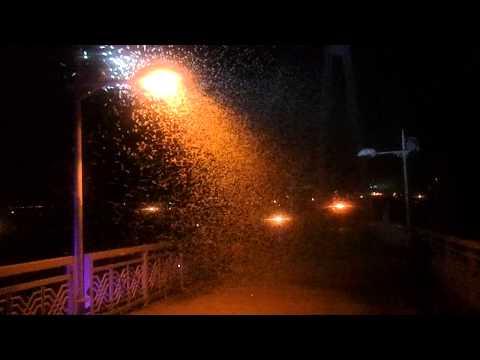 Город Самара: климат, экология, районы, экономика