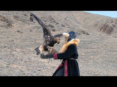 How Did An Oklahoma Woman Start Hunting With Eagles In Mongolia?