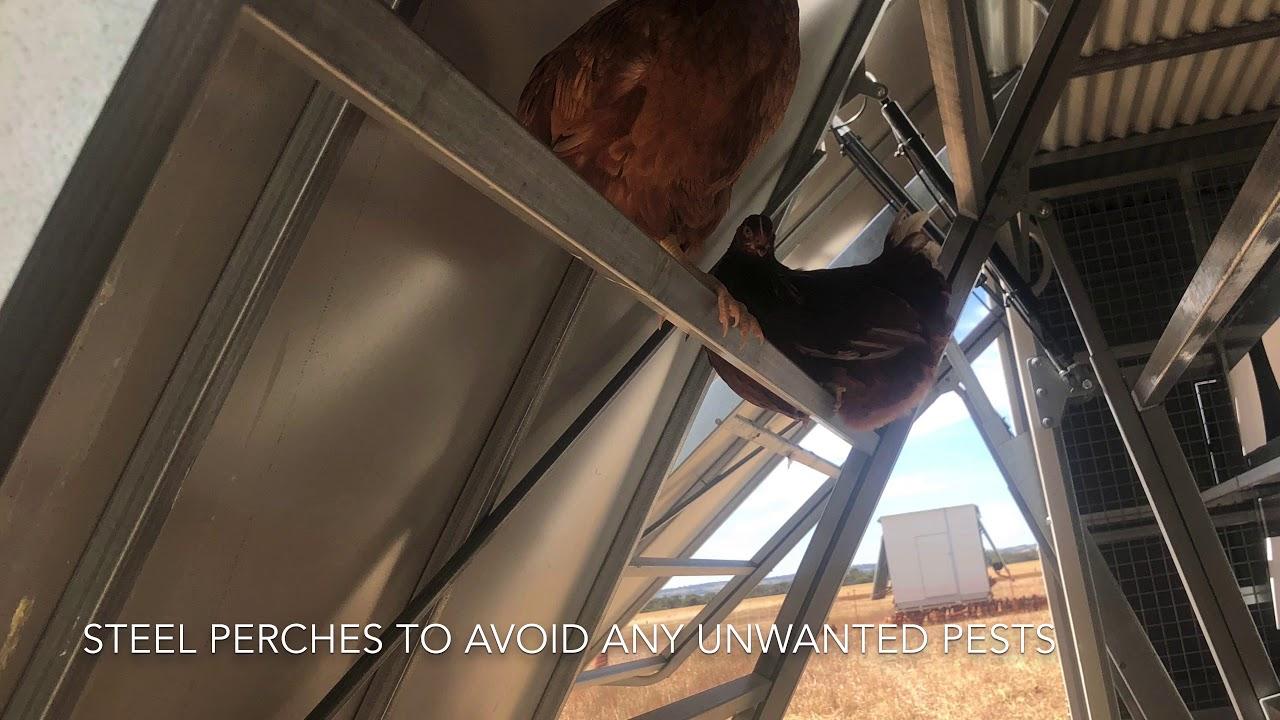 Aussie Chicken Trailer