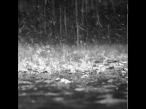 Bija - Rainscape