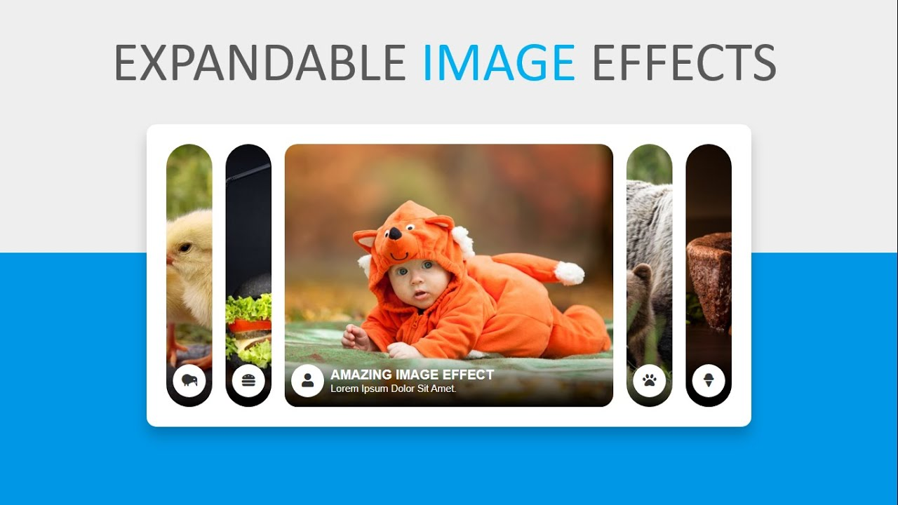 Expandable Image Effect Using HTML / CSS / JQUERY - Amazing Image Gallery Effect
