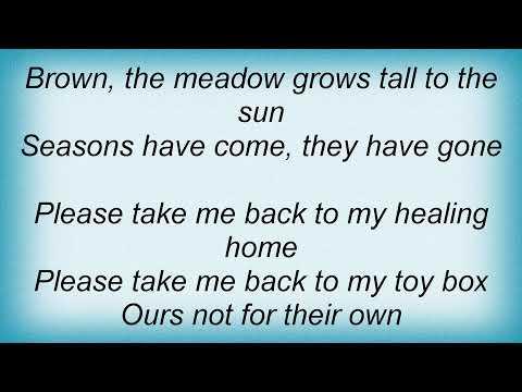 Soundgarden - Toy Box Lyrics mp3