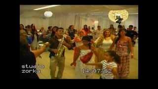 babina amet 2012 (3)