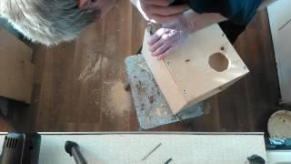 Как сделать гнездо для попугаев . Гнездовой домик для попугаев. Как повесить гнездо.