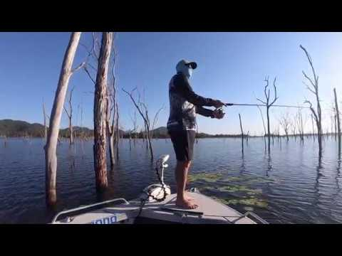 Teemburra Barra - Fish Of A Thousand Casts - Lost Fish With A Consolation Prize
