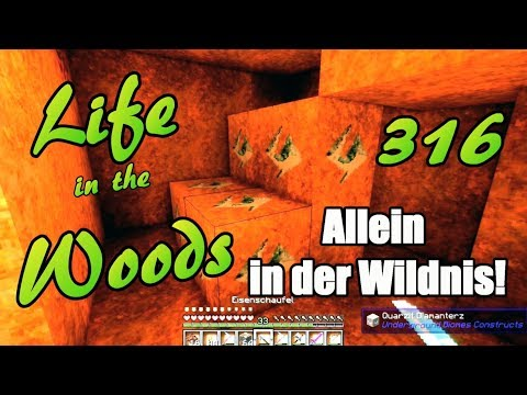 LIFE IN THE WOODS 316 Deutsche Sprache, schwere Sprache