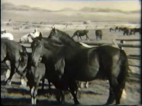 Donovan Ranch, 1920