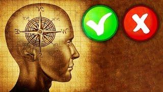 AZ EMBERI ÉLET NEHÉZ DÖNTÉSEI 🐧 Moral Machine