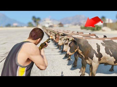 ¿Cuantas balas para matar a 100 Vacas en GTA 5? - GTA V (Grand Theft Auto 5)