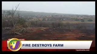 TVJ News: Fire Destroys Farms - August 17 2019