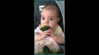 baby led weaning blw alimentacin complementaria 6 a 12 meses