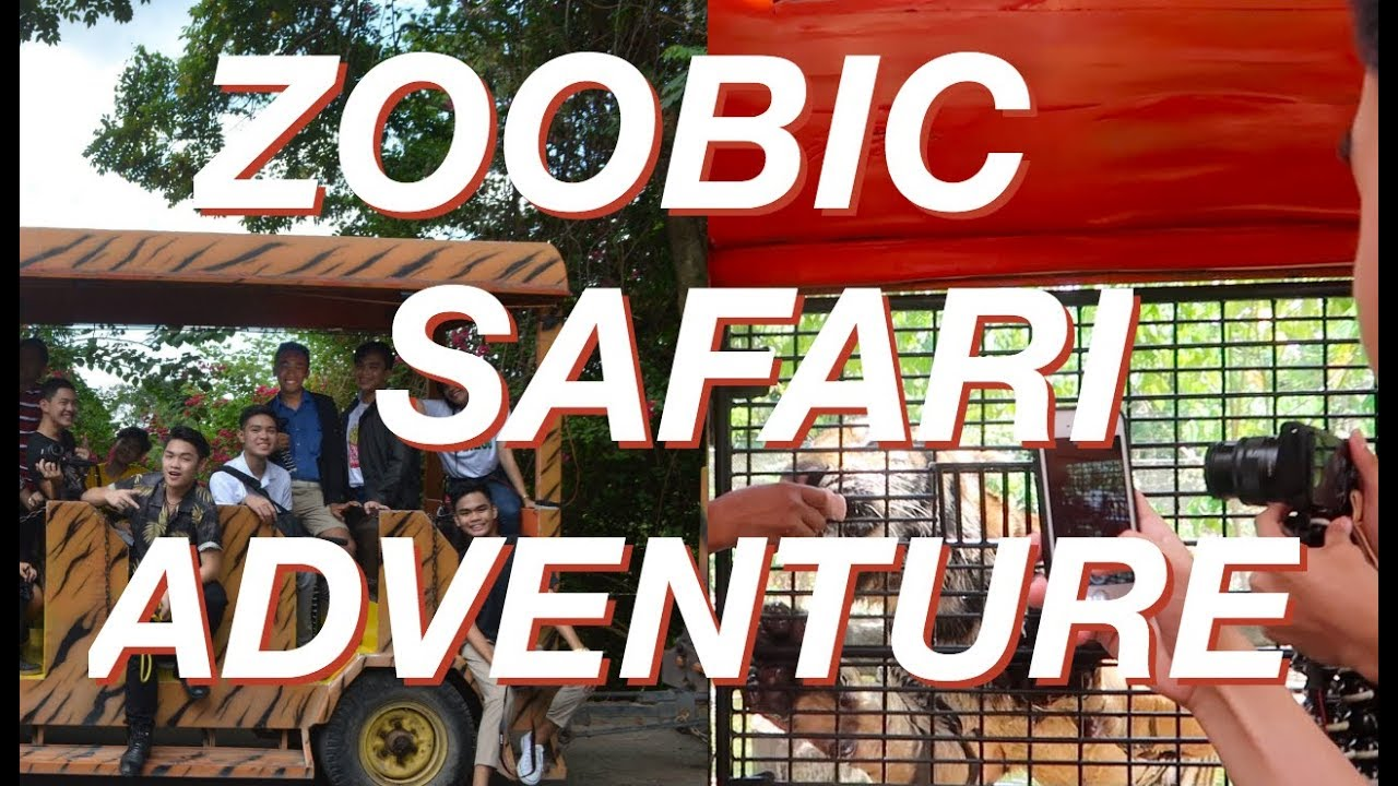 TIGER ATTACK CAUGHT ON CAMERA?! ft. Zoobic Safari (Philippines) | Josh Whyte