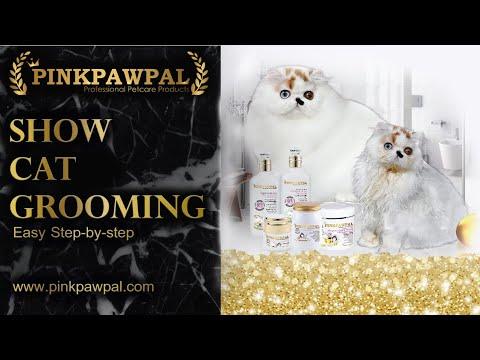 Show Cat Grooming Step by Step/ การดูแล และอาบน้ำแมว ให้สวยปังแบบแมวประกวด