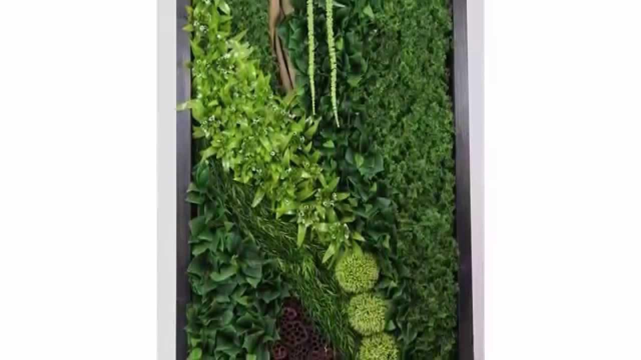 Arte fiore snc giardino verticale youtube - Piante per giardino verticale ...