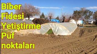 103 Biber fidesi yetiştirme püf noktaları. Biber yetiştiriciliği mersin Tarsus baharlı köyü