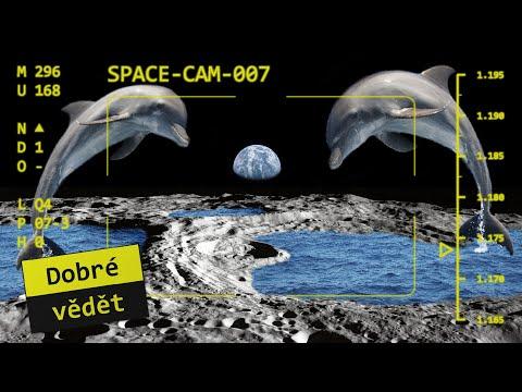 Space cam #07 - Vida, voda na Měsíci