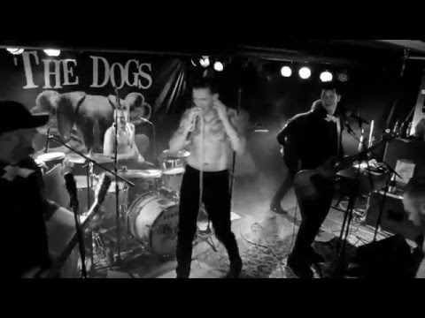 the Dogs - Guilty - live from R.i.P